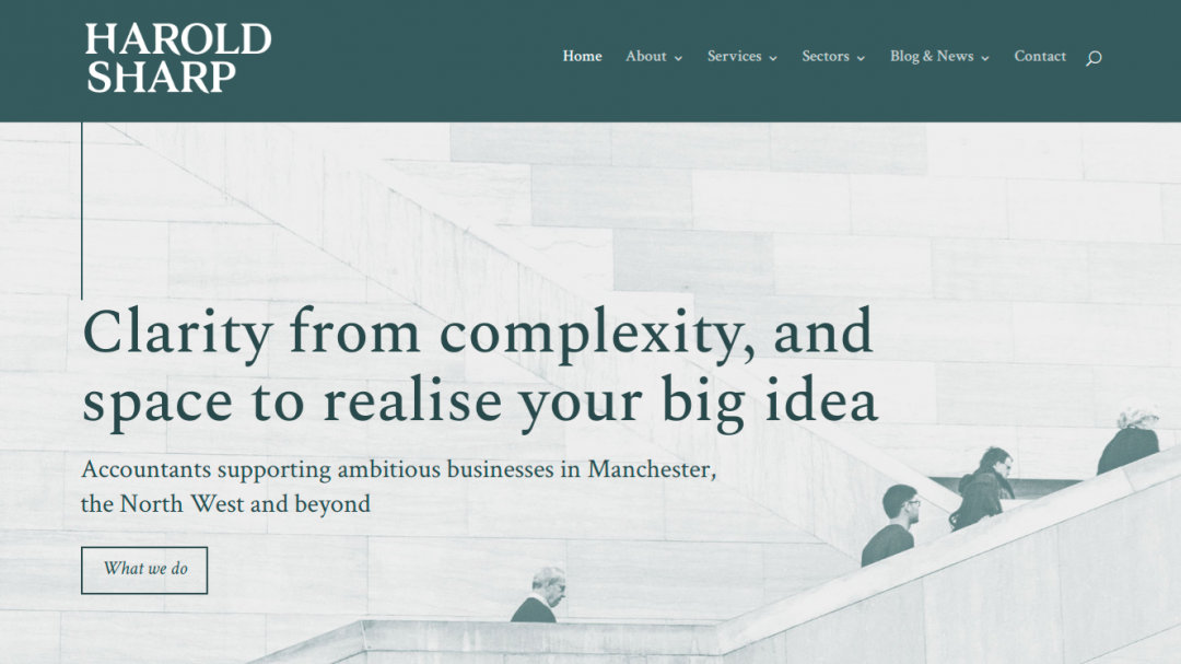 Brand strategy for Harold Sharp homepage
