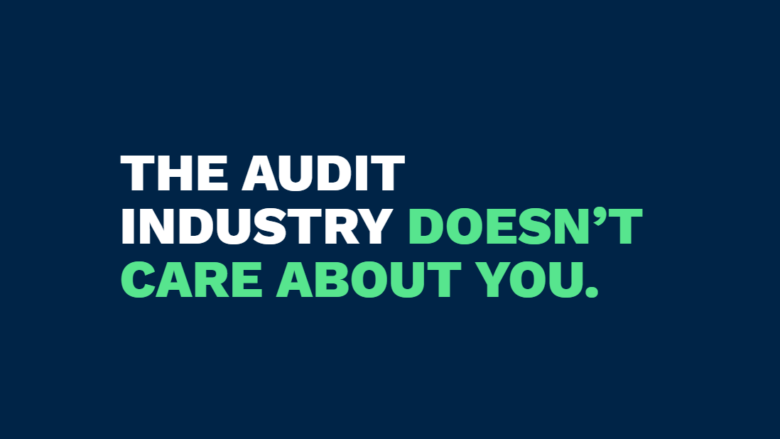 The audit industry doesn't care about you.